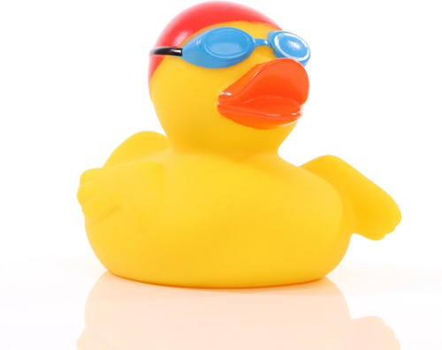 Squeaky duck swimmer