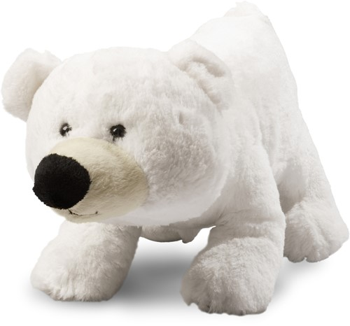 Polar bear Freddy