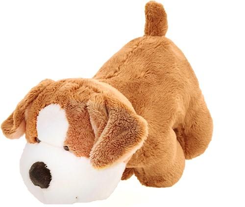M160933 Tracking dog corgi Sammi - Brown/white - one size